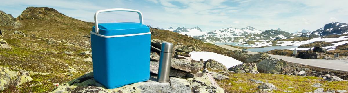 Gaskühlschrahnk Kühlbox Gas Kühlschrank
