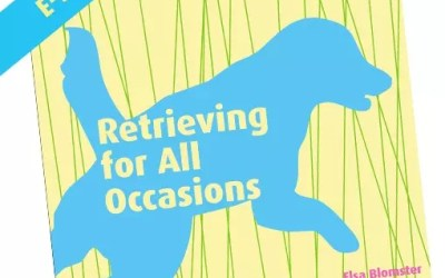 Retrieving for All Occasions – ebook