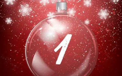 Julkalender lucka 1: Agilityglädje