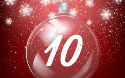 Julkalender lucka 10: Lämplighetstest – för hundens egen skull