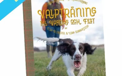 Valpträning till vardag och fest – belöningsbaserad fågelhundsträning – ebok