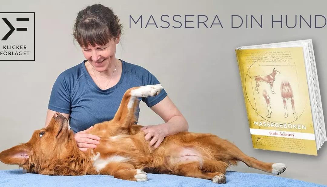 Månadens bok november: Massageboken – författaren berättar