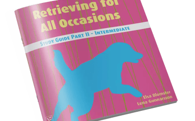 Retrieving for All Occasions – Study Guide Part II – Intermediate