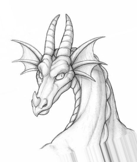 Картинки драконов для срисовки карандашом (30 рисунков)