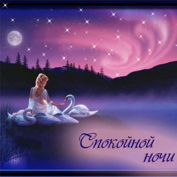 Картинки спокойной ночи, сладких снов (62 открытки)