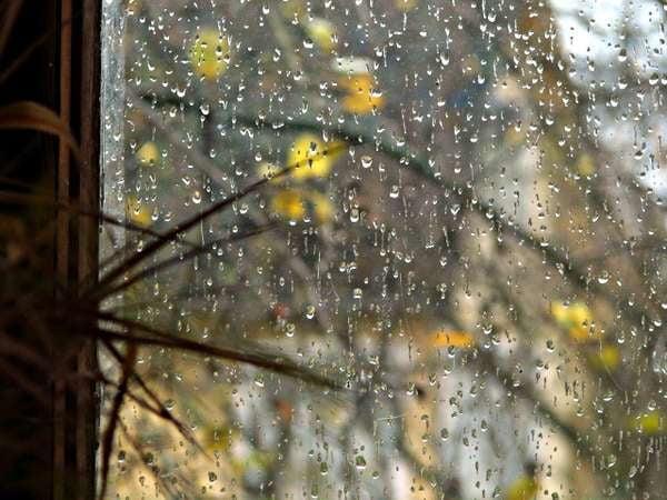 Картинки осенняя погода (30 фото) • Прикольные картинки и ...