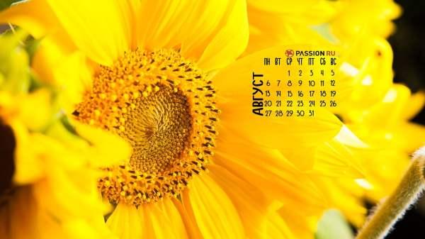 Красивые картинки про август (30 фото) • Прикольные ...