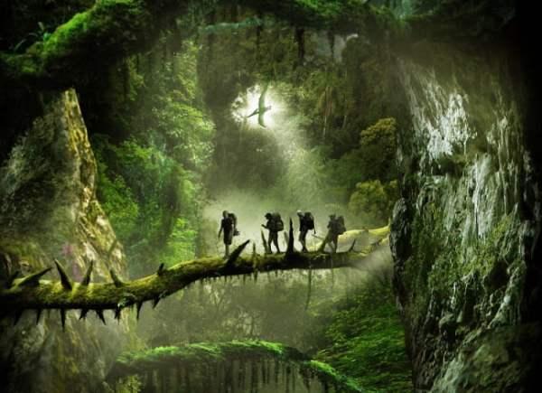 Джунгли - красивые картинки на рабочий стол (40 фото ...
