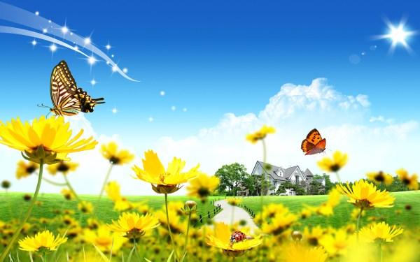 Желтый цвет - красивые картинки (40 фото) • Прикольные ...