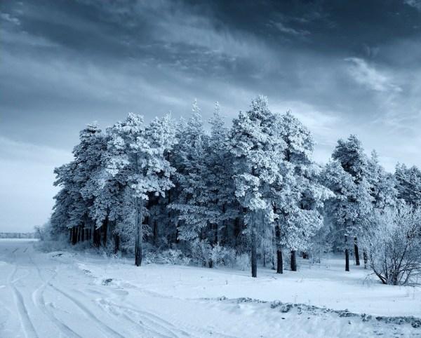 Картинки зима на рабочий стол (50 фото) • Прикольные ...