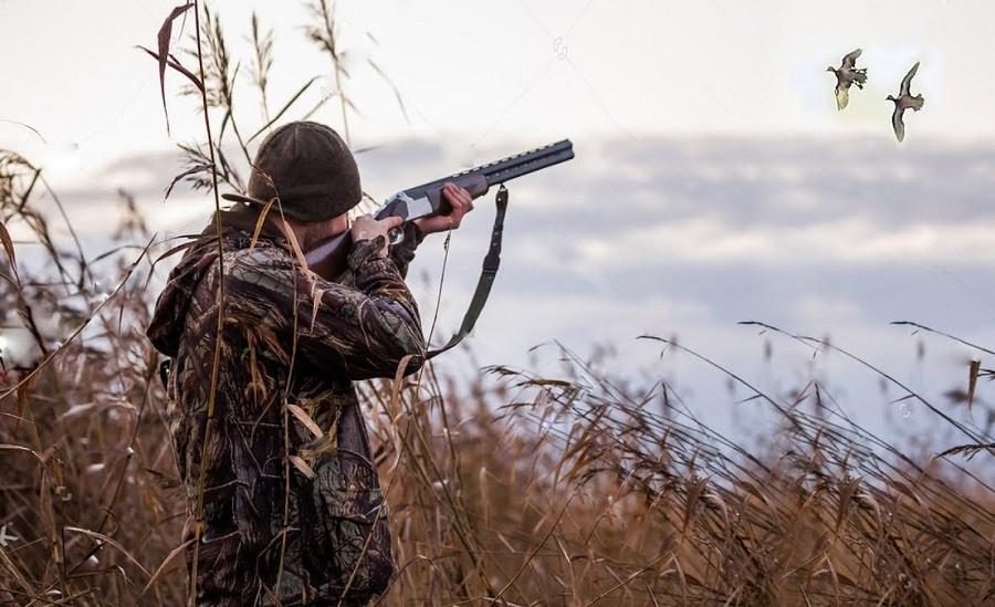 Картинки охота (30 фото) • Прикольные картинки и позитив