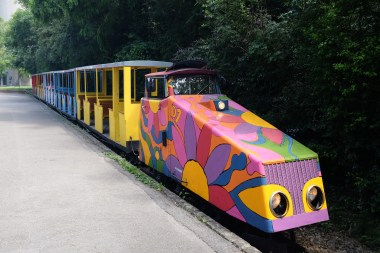 This train goes around on of the parks - it's super fun to ride it.
