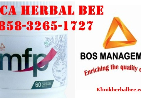 Manfaat Maca herbal bee 0858-3265-1727