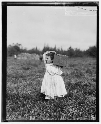 child-labor-3