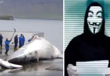 """Anonymous aj ako ochrancovia prírody! """"Veľryby hlas nemajú, tak my budeme ich hlasom!"""""""