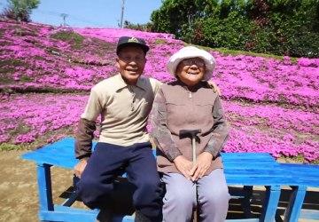Milujúci manžel strávil dva roky pestovaním tisícok kvetov pre svoju nevidiacu manželku