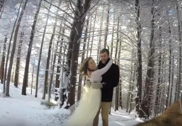 Pár sa rozhodol, že svoje svadobné video nechá natočiť psíkovi. Výsledok je skutočne krásny a stojí za zhliadnutie