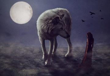 Nauč sa kráčať v tme a veriť v svetlo