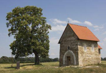 TOUR DE STROM: Zapojte sa do insta súťaže s naj stromami Slovenska