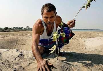 Príbeh ako z knižky: Chlapec sadil stromy 40 rokov, dnes je z nich les a domov stovky slonov