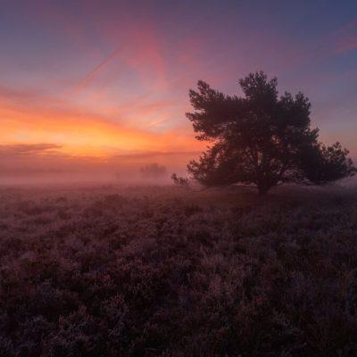 zonsopkomst ermelose heide