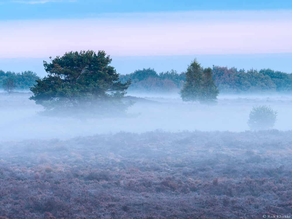Mist heide