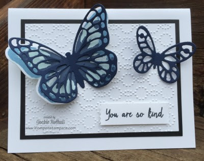 Butterfly Color Combinations
