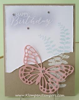 A Look Back–Butterfly Basics