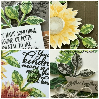 New Online Stamping Classes & Card Kits