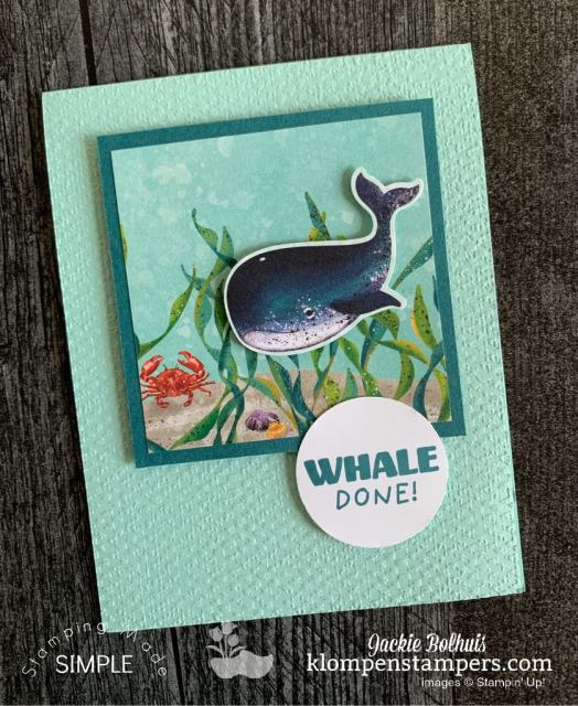 easy-greeting-cards-with-design-it-with-dsp-series-by-jackie-bolhuis-klompen-stampers