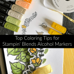 Top Tips for Coloring with Alcohol Markers