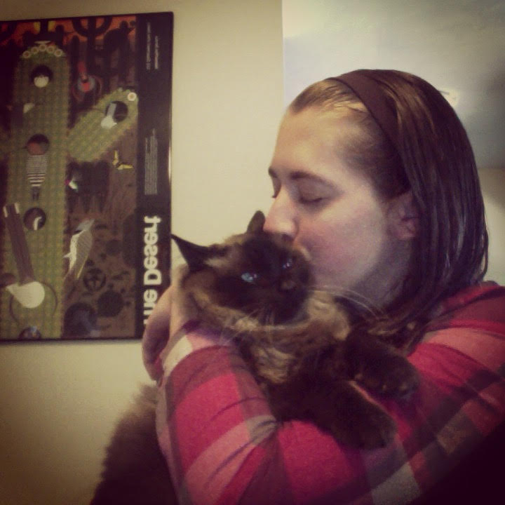 The Writer & Cat Connection 1