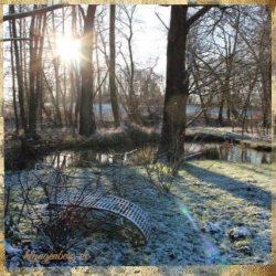 Seminarhaus Klyngenberg im Winter 2 - Impressionen