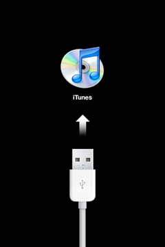Usb cord pointing the iTunes symbol