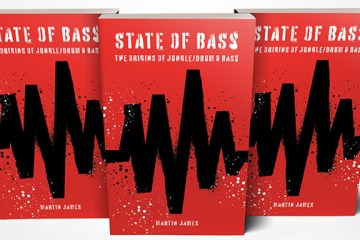State of Bass book