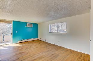 937 N Clarkson Street Unit 306-MLS_Size-001-2-01-1800x1200-72dpi