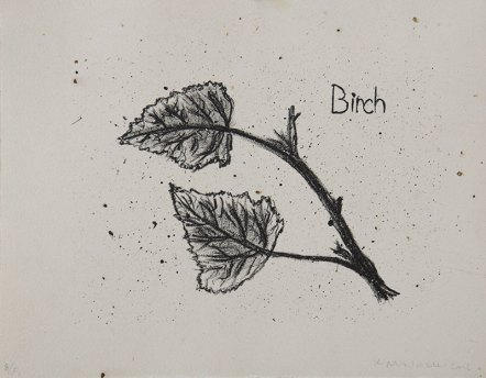 "Birch, Tree Accessories - 8x10"" Lithograph, 2013"