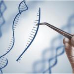 Gene editing and Designer 'CRISPR' babies