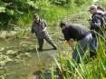 Terepi vízminőség-vizsgálat Nagydobronyban