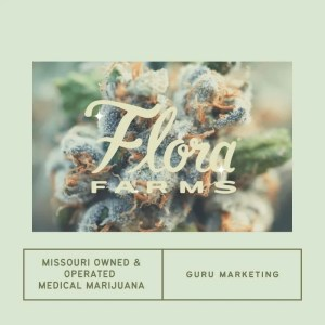 Guru Marketing & Missouri Medical Cannabis | SEO & More