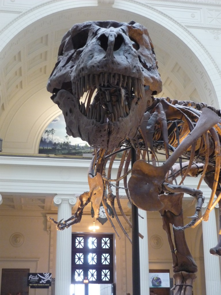 A MBRC Dinosaur in the…Bones!