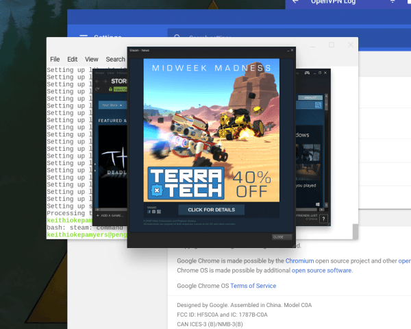 Can You Run Steam on ChromeOS via Project Crostini??? I Don't See