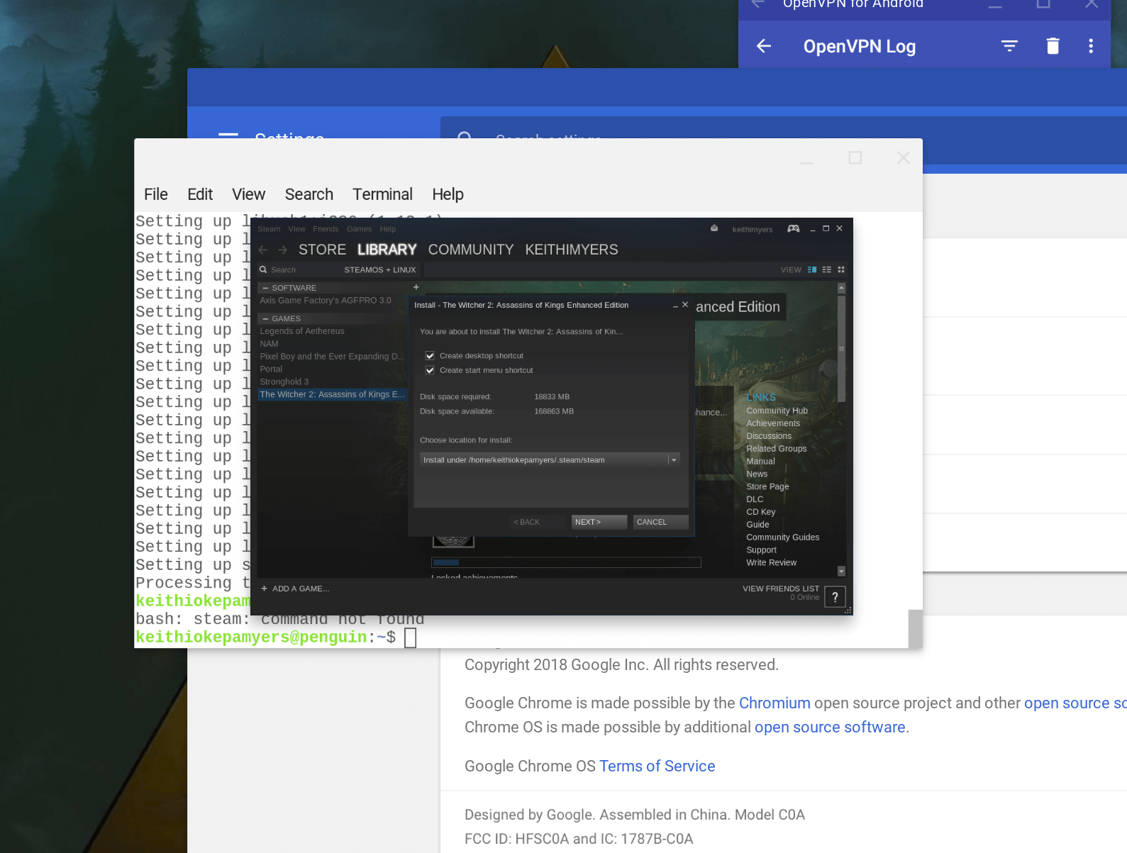 Can You Run Steam on ChromeOS via Project Crostini??? I Don't See Why Not?