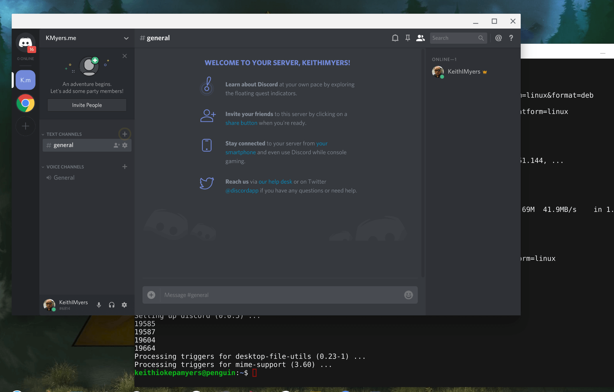 Installing Discord on ChomeOS via Project Crostini