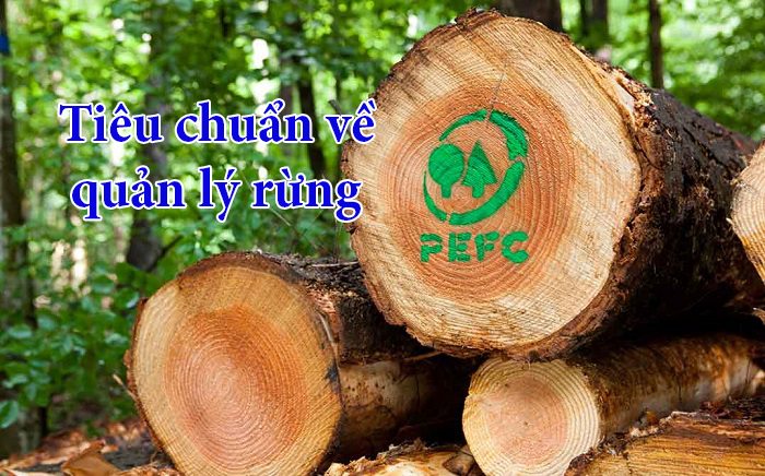 Pefc (programme for the endorsement of forest certification) is the biggest sustainable forest certification scheme worldwide, and was established in 1999. Pefc Certification Cong Ty Tnhh Chứng Nhận Kna