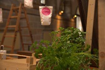 Frische Kräuter für die Künstler-Stullen. Wir sind vorbereitet für 1000 von Hand geschmierte Brote.