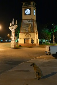 Punta Gorda by night