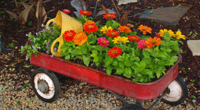 Container Gardening – Outside the Box