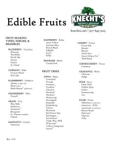 thumbnail of Knechts 2019 Edible Fruits