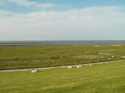 visited Schillig... a small village at Northern Sea... sheep, water, wind, dikes & the tides